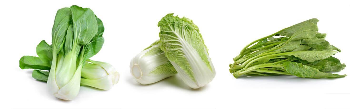 含較高鈣質白菜、大白菜